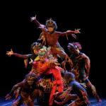 Balletto Nazionale di pechino 2011