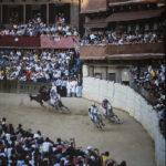 Palio di Siena 1985